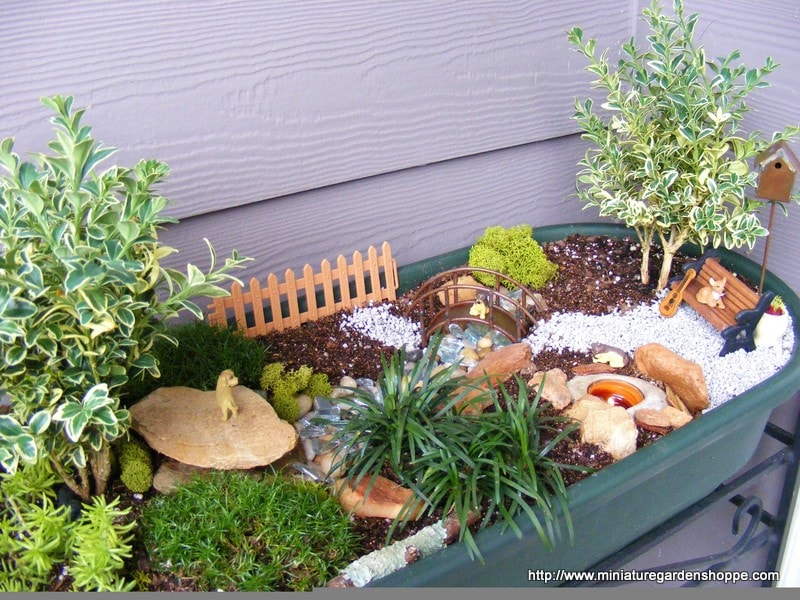 Miniature Garden Ideas miniature garden ideas Miniature Garden Example