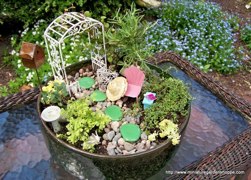 Miniature Garden Inspiration Gallery